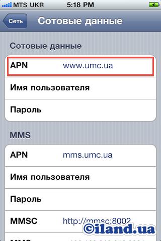 Не работает интернет мтс на ipad mini как заработать деньги на фотографиях в интернете без вложений