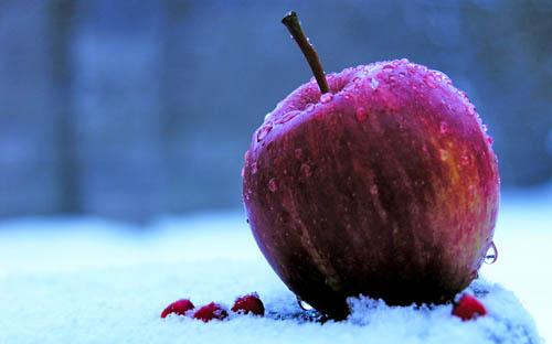Как пользоваться iPhone, iPad и MacBook в холодное время года